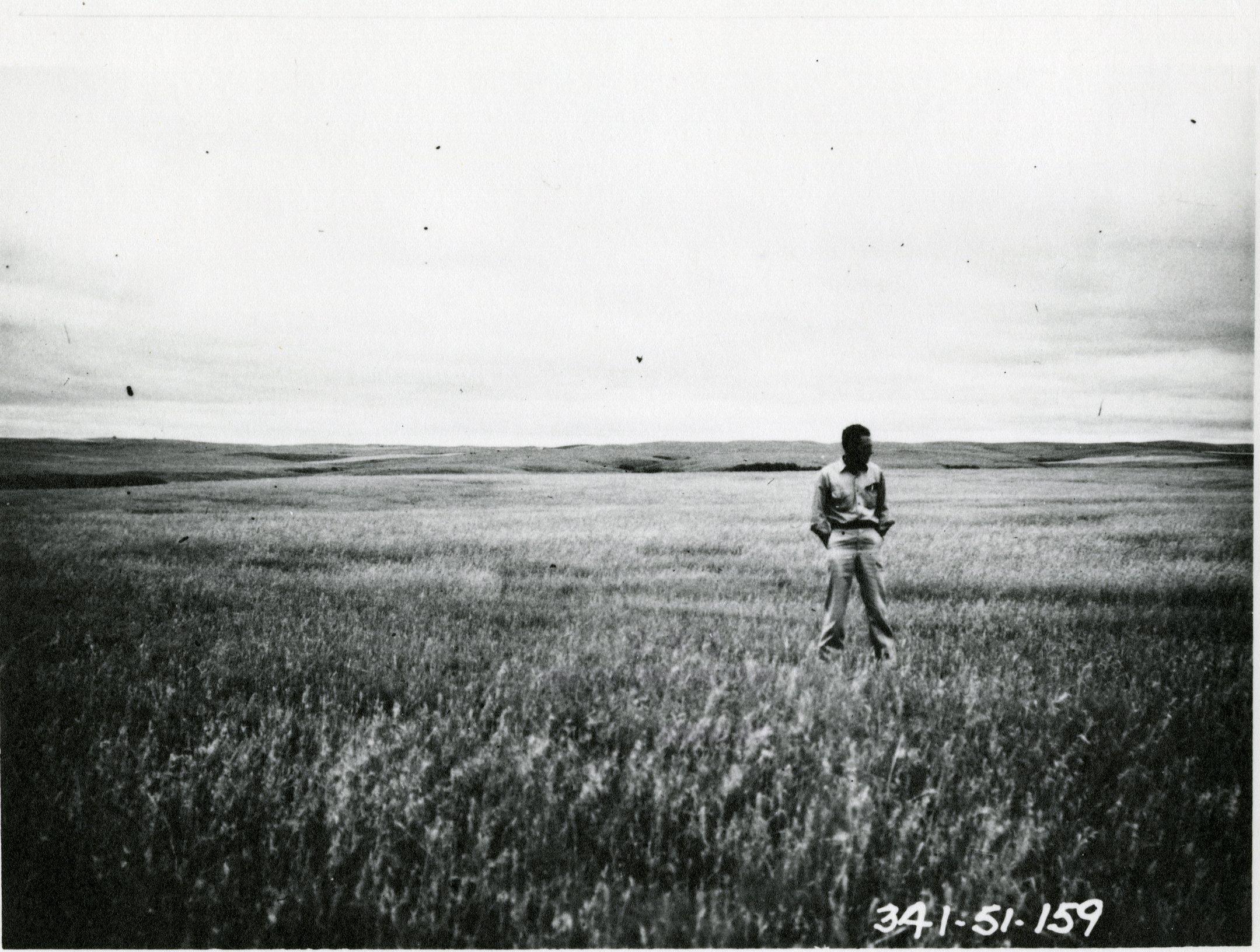 George Gillette's Wheat Field