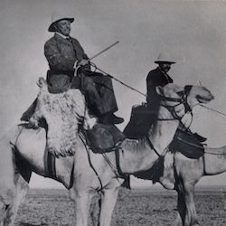 Theodore Roosevelt on a camel